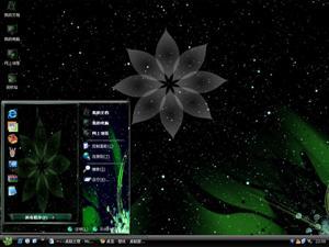 电脑设计花朵电脑主题