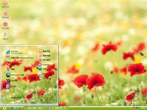 美丽的罂粟花电脑主题