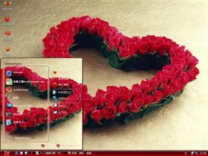 玫瑰花语电脑主题图片