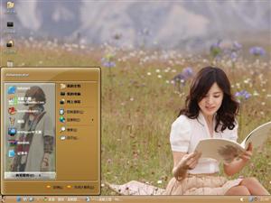 宋慧乔美女电脑主题