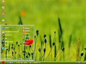 绿草红花电脑主题