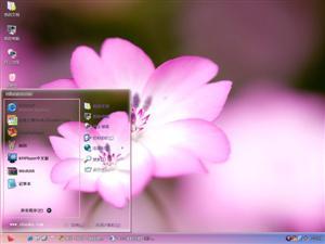 粉红花朵电脑主题