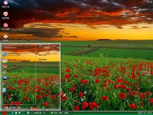 田园罂粟花电脑主题