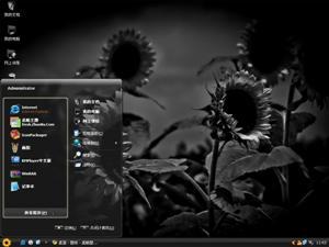 黑色花朵电脑主题