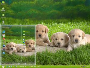 狗狗的世界电脑主题