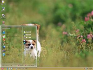 可爱的小狗狗电脑主题