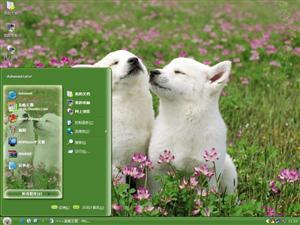 小狗爱情电脑主题
