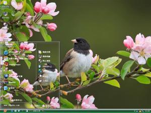野生小鸟摄影电脑主题