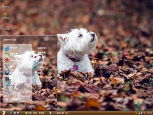 忧伤的狗狗电脑主题