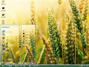黄金小麦电脑主题