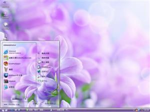 美丽的花朵电脑主题