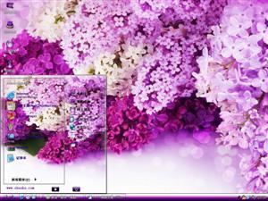 淡紫丁香花电脑主题