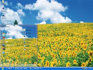 葵花朵朵向阳开电脑主题