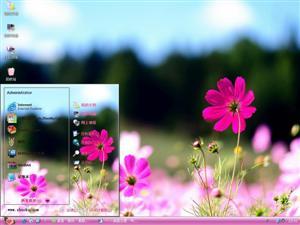 红粉花朵电脑主题