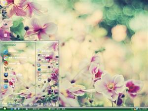 美丽花朵电脑主题