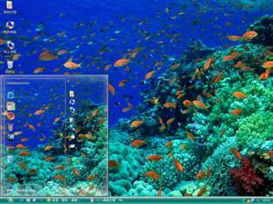 缤纷海底世界电脑主题