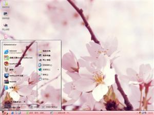 粉红色的花电脑主题