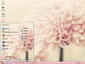 美丽花瓣电脑主题