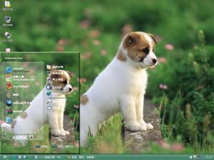 狗狗郊游电脑主题