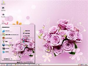 粉色玫瑰花电脑主题