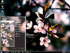 春天的花朵电脑主题