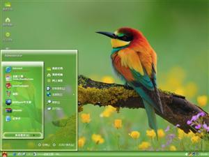春天的鸟儿电脑主题