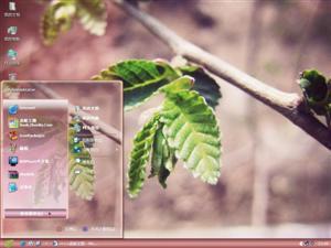 Lomo风景电脑主题