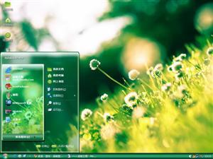 阳光三叶草电脑主题