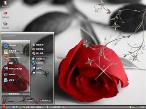 漂亮玫瑰电脑主题