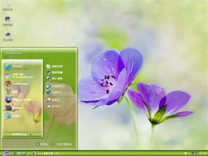 鲜花盛开时电脑主题