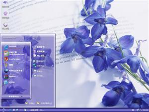 美丽紫罗兰电脑主题
