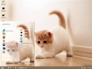 小萌猫电脑主题