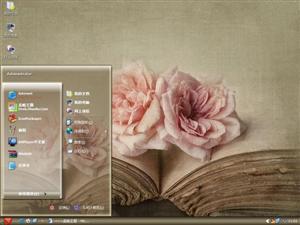 粉色花朵电脑主题