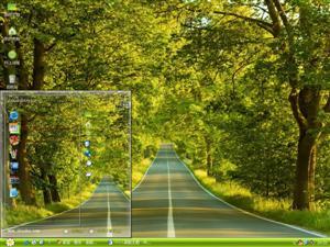 高清绿树公路电脑主题