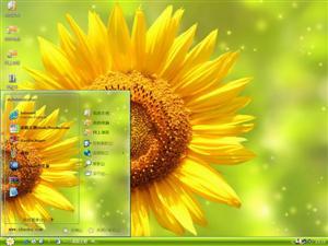 美丽的向日葵电脑主题