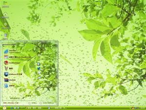 绿叶水泡电脑主题