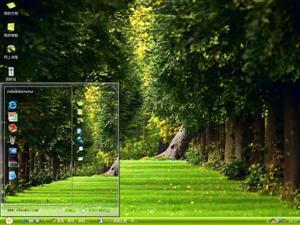 自然夏日森林里电脑主题