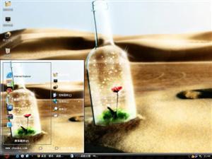 漂流瓶之花电脑主题