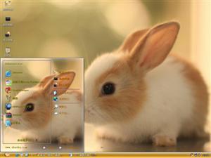 萌萌兔电脑主题