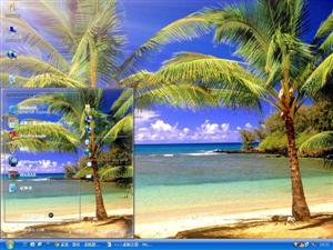 沙滩棕榈树风景电脑主题