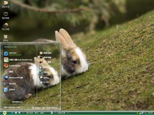 可爱小兔子电脑主题