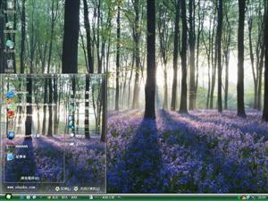 森林电脑主题
