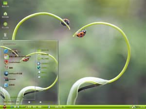 瓢虫的爱情电脑主题
