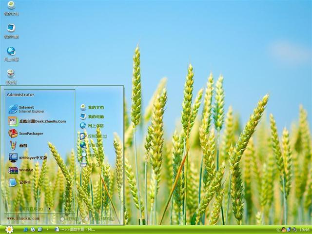 小麦植物桌面主题