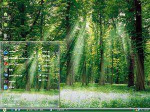 绿色的森林电脑主题