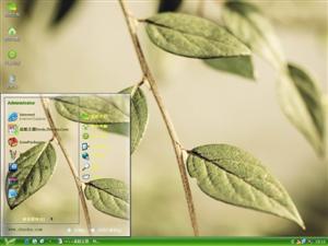清新绿叶电脑主题