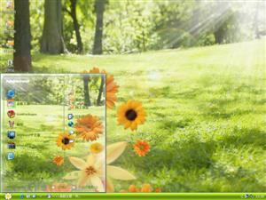 绿色护眼菊花电脑主题