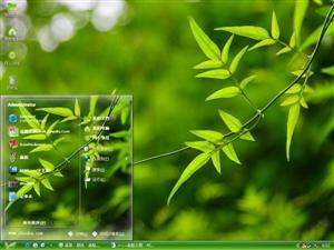 单反绿叶电脑主题