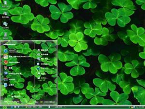 美丽三叶草电脑主题