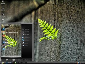 唯美植物电脑主题